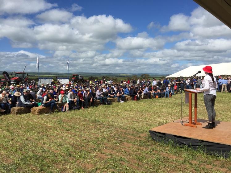 HBray at Hart Field Day 2015 Grain Producers SA